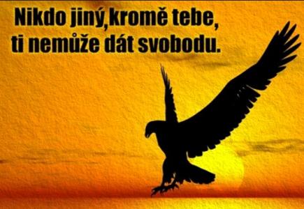 A protože svobody máme už méně…..