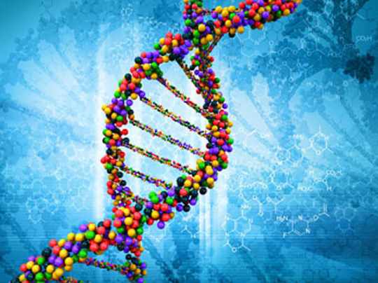 Cizí DNA v našem těle ovlivňuje náš život