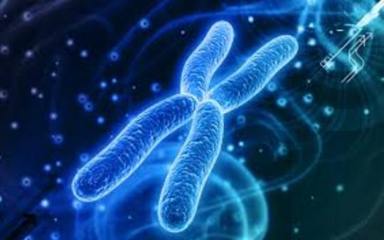DNA je nejdokonalejší anténou ve vesmíru