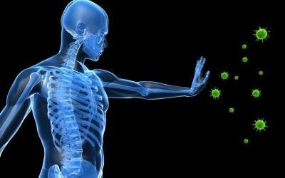 Vědecky potvrzeno: Imunitní systém je možné kontrolovat vůlí