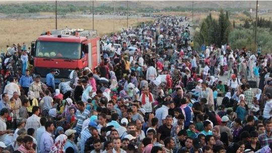 Mýtus: Uprchlíci s hrůzami války v jejich očích, téměř všichni jsou ženy s malými dětmi…..A realita….Dnes už i slepci ji vidí