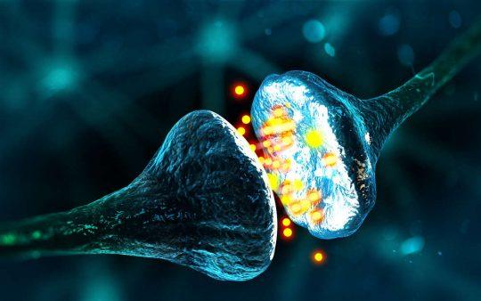 V našom mozgu bol objavený nový typ fantómovej pamäte