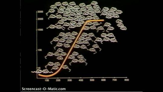 """VIDEO: Děsivý experiment Dr. Calhouna ze 60. let odhaluje """"autoregulus"""" populační exploze, proti kterému neexistuje obrana. Bílá rasa kopíruje experiment vědce a jeho hordy bílých myší!"""