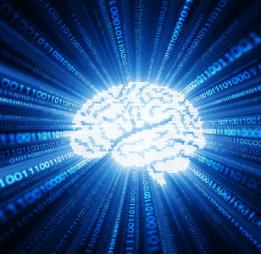 Jak mozek tvoří nové neurony: 4 věci, které zvyšují inteligenci