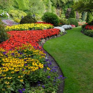 Prírodná záhrada v septembri. Vlastné semená zo záhrady