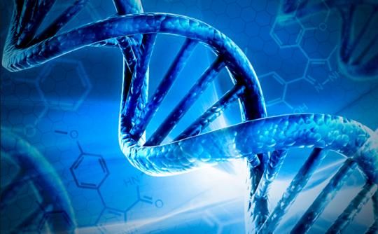 Lidská DNA je biologický internet, tvrdí ruští vědci
