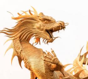 Existovali draci jen v pohádkách?