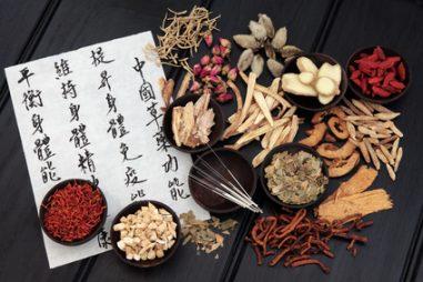 """Konec října není jen o volbách a politice: Užitečný návrat k přírodě. Co je zdravotní archeologie? Naše """"kytičky"""" zatím dobře neznáme. Co má svatá Hildegarda společného s Čínou? A k čemu je našim plicím květák?"""