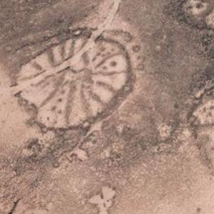 Vědce matou stovky záhadných kamenných staveb v Saúdské Arábii, mohou být staré až 9000 let. Netuší, k čemu sloužily