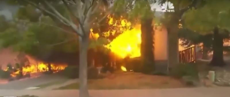 Stromy, ktoré prežili požiare. Hneď vedľa budov zhorených na popol. Dôkaz použitia tajnej zbrane?