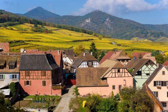 Francúzsko chce do roku 2022 zabezpečiť aby potraviny vo verejnom sektore boli z polovice bio alebo lokálne