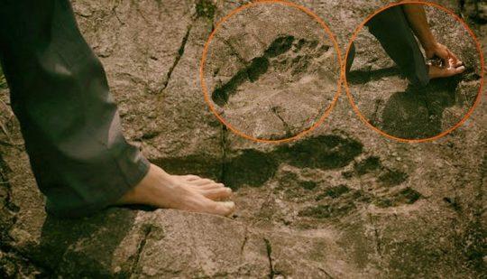 Fosílie obrovských otlačok nôh objavené v Číne