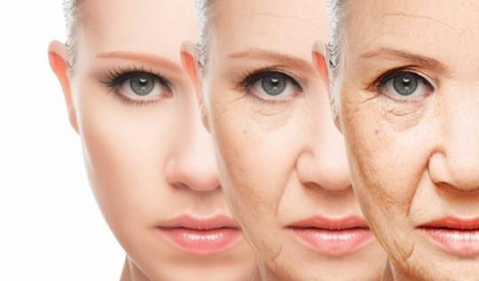 Medicína antistárnutí: Pokud budete naživu o 30 let, pravděpodobně budete naživu také o 1000 let…