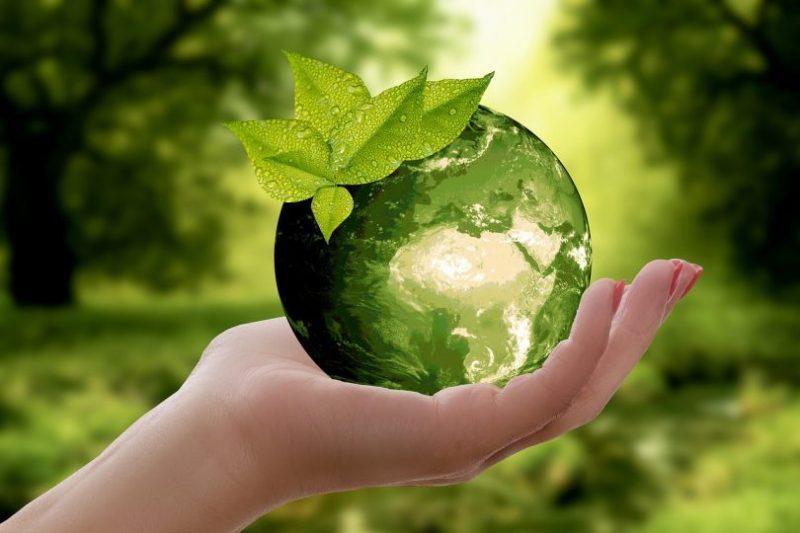 Video: Zelená lež! Nový dokumentární film odhaluje praktiky korporací, které své výrobky označují jako ekologické a udržitelné, i když nejsou