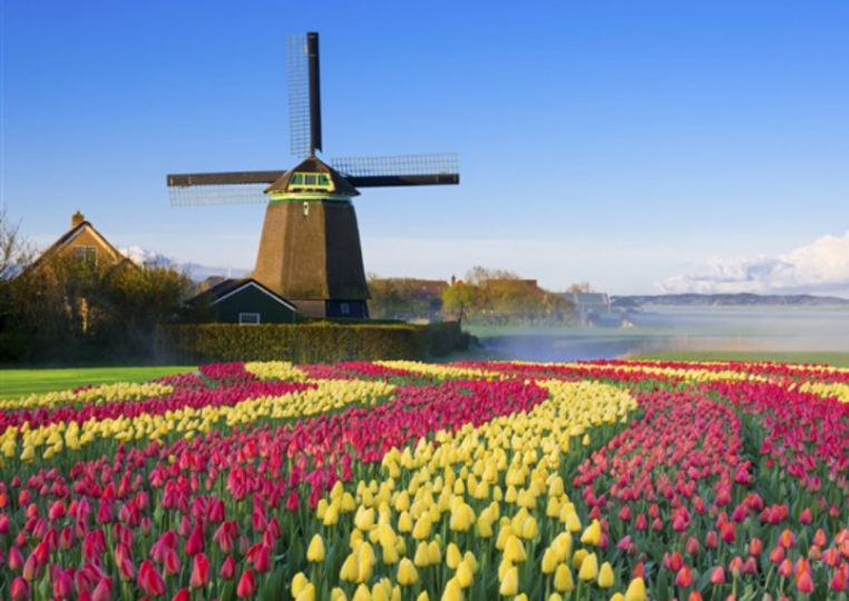 Má Nizozemsko problém? Ano má a velký