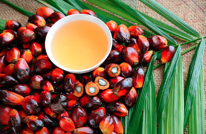 Palmový olej. Co teď s ním?