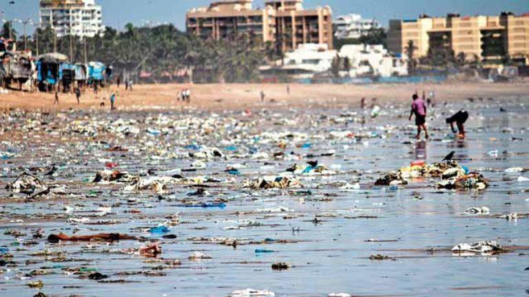 Dva roky čistili dobrovolníci indickou pláž doslova utopenou v plastech. Odklidili miliony kilogramů odpadu. Díky nim se sem vrátily mořské želvy
