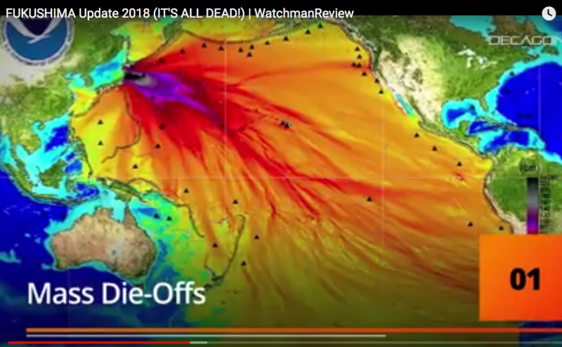 Fukušima: Nepředstavitelná ekologická apokalypsa. Co před námi tají?