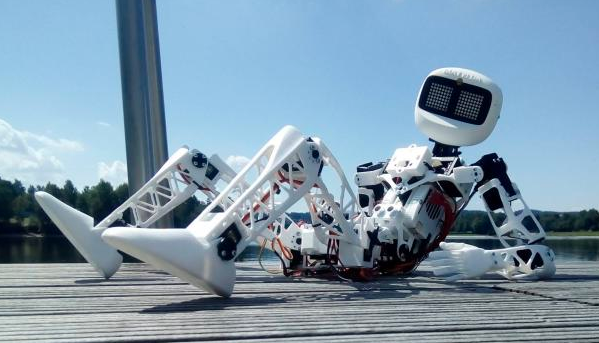 Humanoidní robot Matylda vyjíždí stopem z Jablonce. Zastavit mu může kdokoliv
