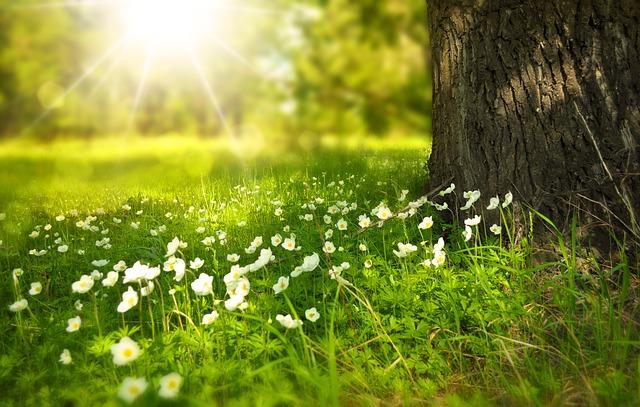 9 Věcí které oslabují naši spirituální sílu
