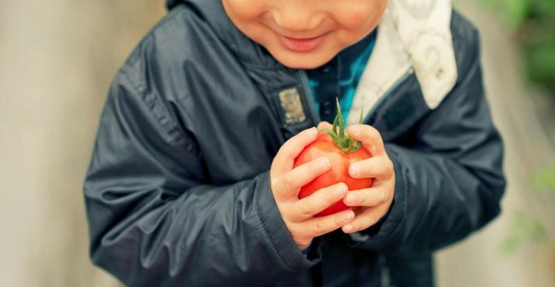 Je dokázáno, že už týden na této stravě snižuje hladinu toxinů v těle o 95 %