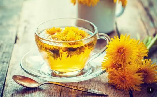 Pampeliškový čaj. Podpoří imunitu a pomůže zhubnout