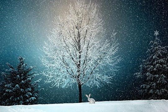 PAPRSKY – přejeme vám všem radostné přípravy na velké svátky, které končí nárůst vlády temnoty