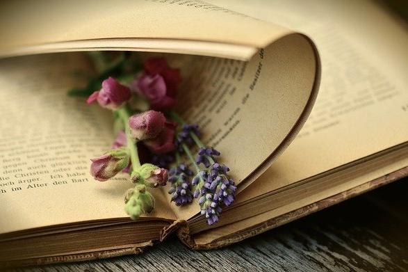 Březen – měsíc knihy aneb Doporučte zajímavé knihy